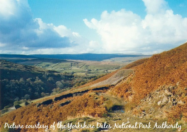 Coast to coast path near Keld, Yorkshire Dales National Park