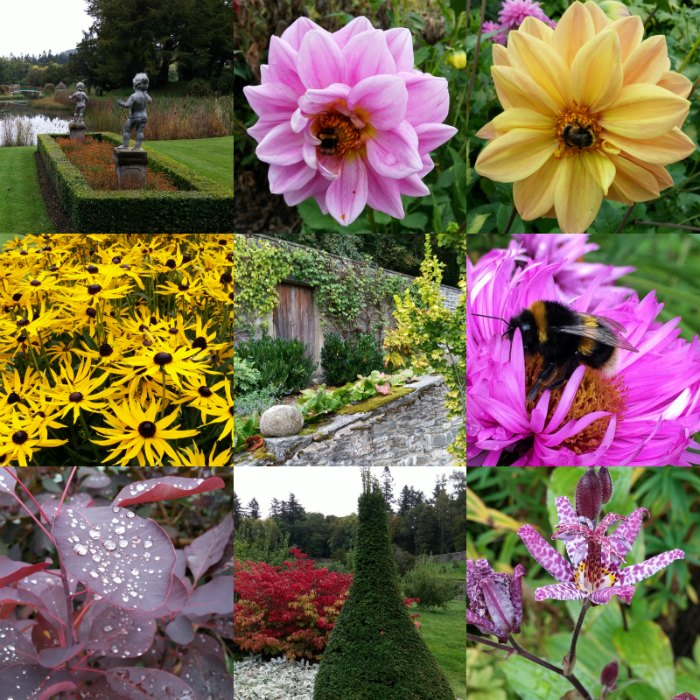 Flowers at Blair Castle