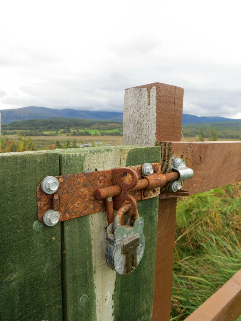 Padlock on gate at the Highland Wildlife Park